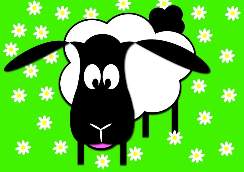 Black Sheep & Daisies by Natalie Allera