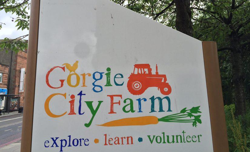 Gorgie City Farn