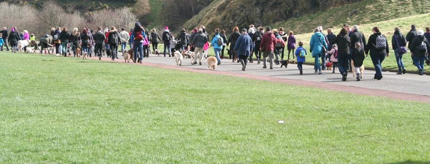 The Great British Dog Walk in Edinburgh